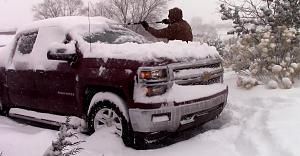snow20.jpg