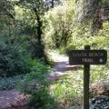 Harris Trail to Beach