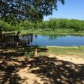 Pond near Medina River, Bandera TX
