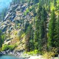 Wenatchee National Forest.  August 2015